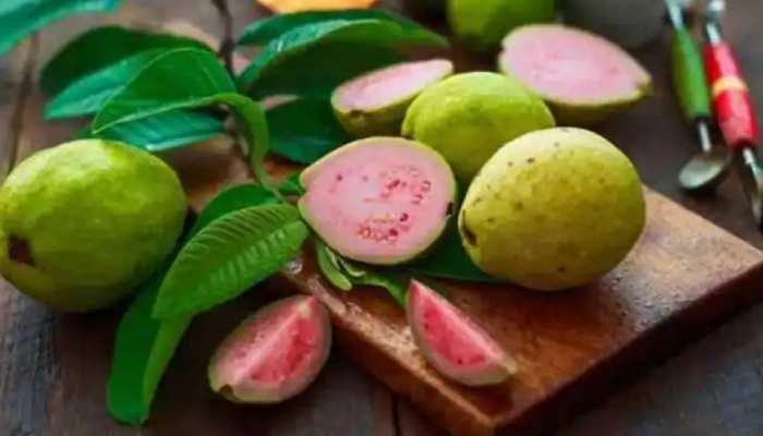 Guava Side Effects: अमरूद खाने के सिर्फ फायदे ही नहीं नुकसान भी, जानें किन्हें भूल से भी नहीं खाना चाहिए
