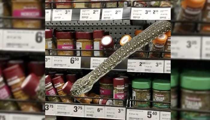 Supermarket में Shopping करने गई महिला के सामने अचानक आ गया अजगर, फिर जो हुआ जानकर हो जाएंगे हैरान