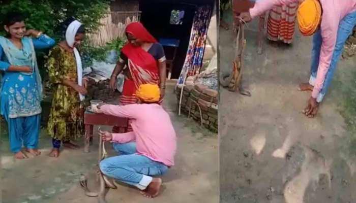 नाग के जोड़े को बंधवाई थी बहन से राखी उसी ने डस लिया तो हो गई मौत, देखिए वीडियो