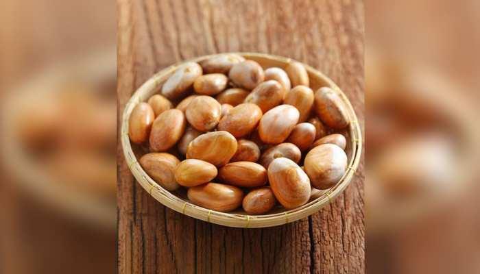 Jackfruit Seeds: पोषक तत्वों से भरपूर हैं कटहल के बीज, फेंके नहीं; इन तरीकों से करें इस्तेमाल
