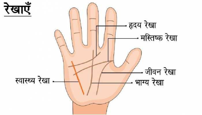 Palmistry: इन लोगों की शादी के बाद बदल जाती है किस्मत, जानें हाथ की कौन-सी रेखाएं हैं जिम्मेदार