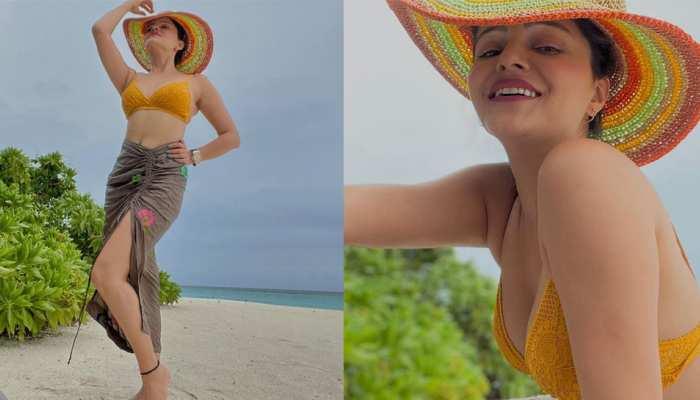 Rubina Dilaiks bikini look sets the internet on fire, photos show Tashan