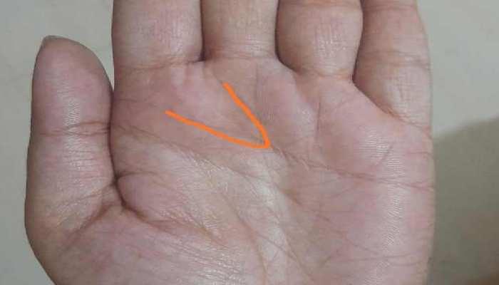 Palmistry: सौभाग्यशाली होते हैं वो लोग जिनकी हथेली में होती है विष्णु रेखा, अपने हाथ में करें चेक