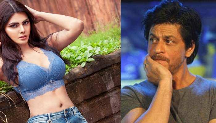 Sherlyn Chopra ने Shahrukh Khan पर लगाया बड़ा आरोप, कहा- 'उनकी पार्टी में लोग सफेद पाउडर ले रहे थे'