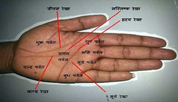 Palmistry: हथेली में हों ऐसे योग तो सफर में ही मिल जाते हैं हमसफर, चेक करें अपना हाथ