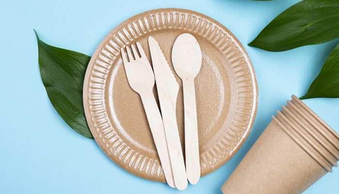प्लास्टिक के बर्तन में आप भी खाते हैं खाना? झेलने पड़ सकते हैं ये नुकसान