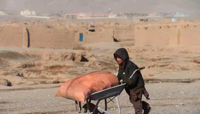 तालिबानी राज में मौत बनी भूख, आठ अनाथ बच्चों ने तोड़ा दम; छिन गया था कमाई का साधन